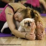 yoga trends